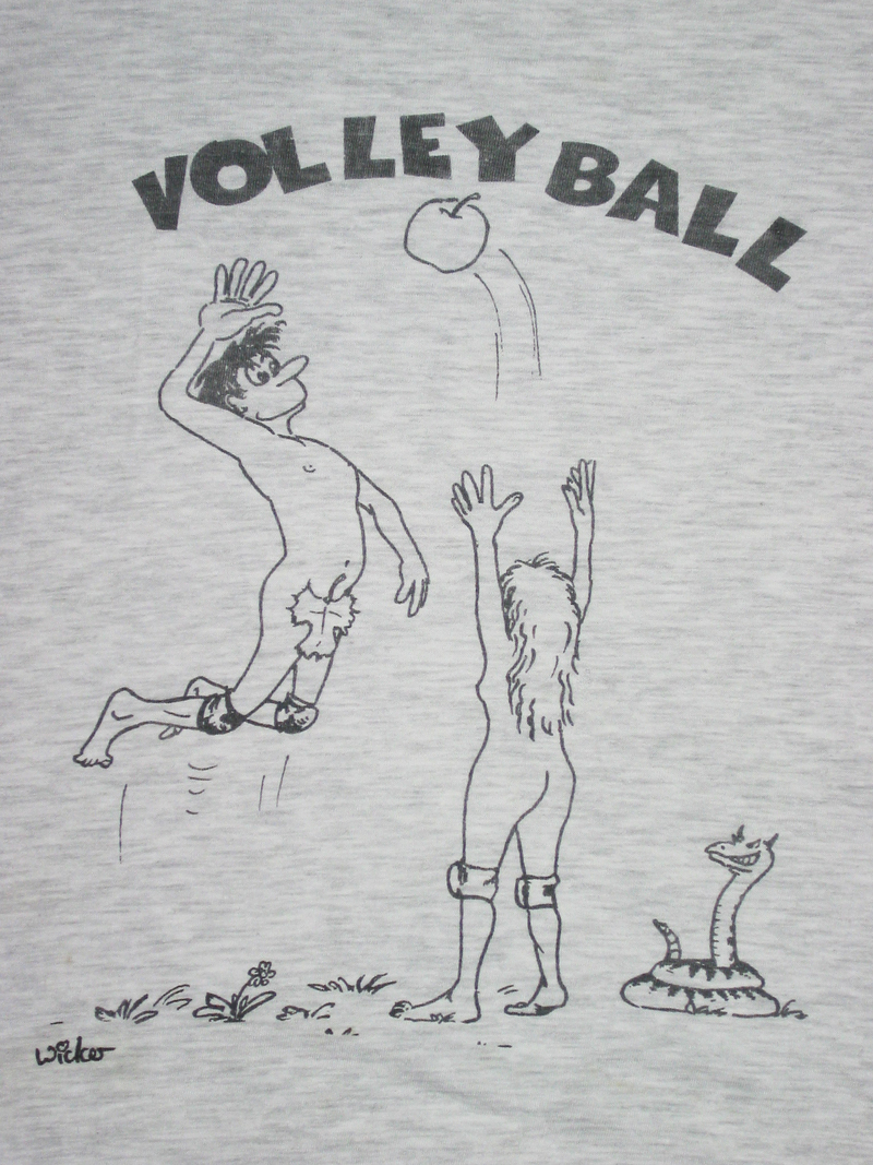 img=dir_image_base/Tshirt_1994_Volleyball_small.jpg